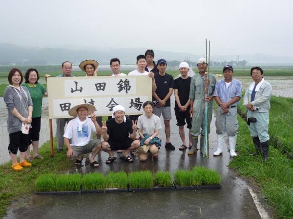 玉の井酒造田植え20080615.jpg
