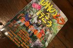 九州のムラ豊潤20090602.jpg