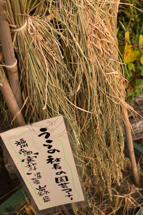 社長の庭山田200910.jpg