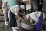 若波酒造20100105.jpg