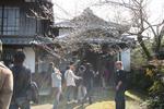 大内邸20090203.jpg
