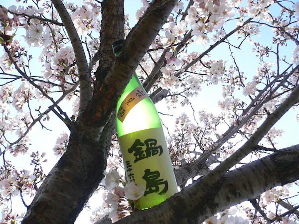 鍋島花見酒200804.jpg