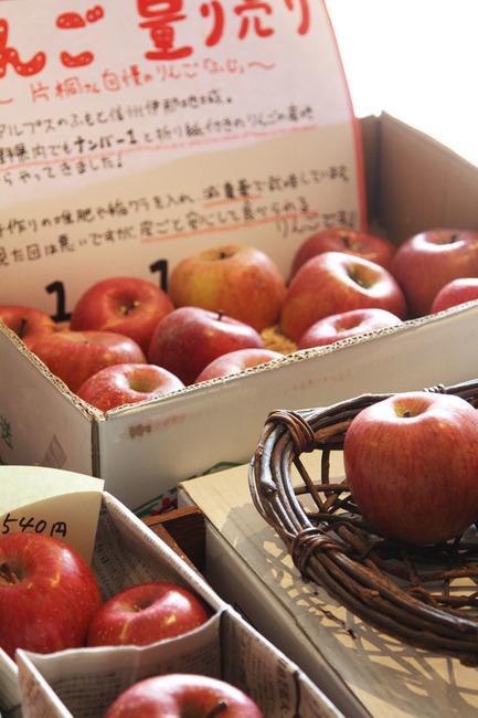 りんご 1.jpg