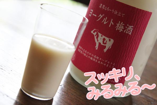 ヨーグルト梅酒2.jpg