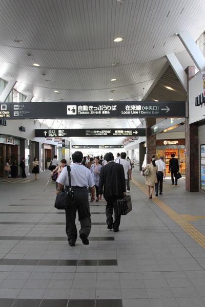 三芳菊20110902.JPG