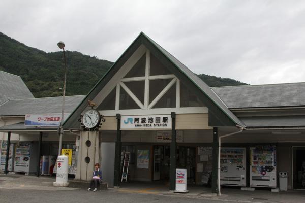 三芳菊20110906.JPG
