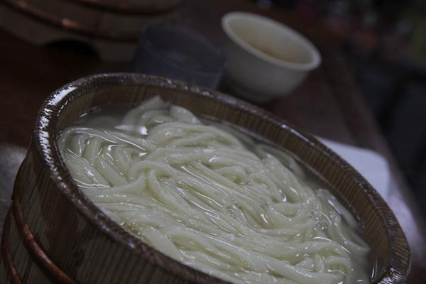 三芳菊20110926.JPG