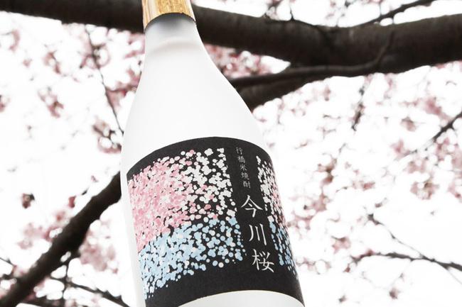 今川桜 1.jpg