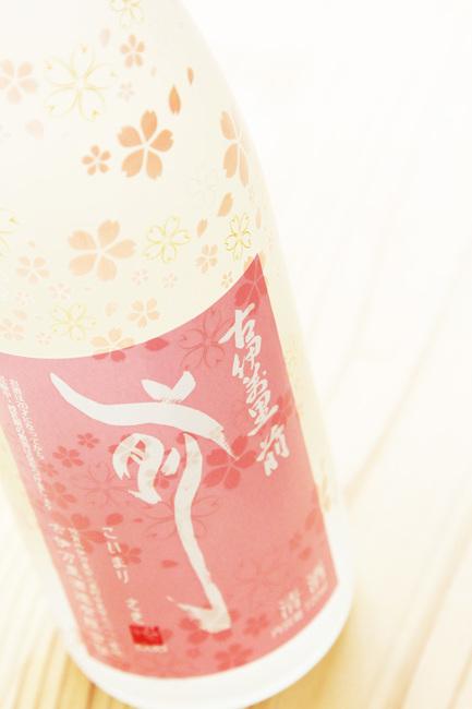 前 桜 1.jpg