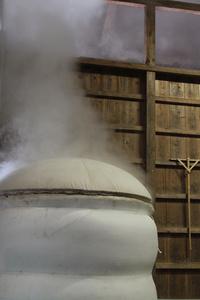 小松酒造201100.jpg