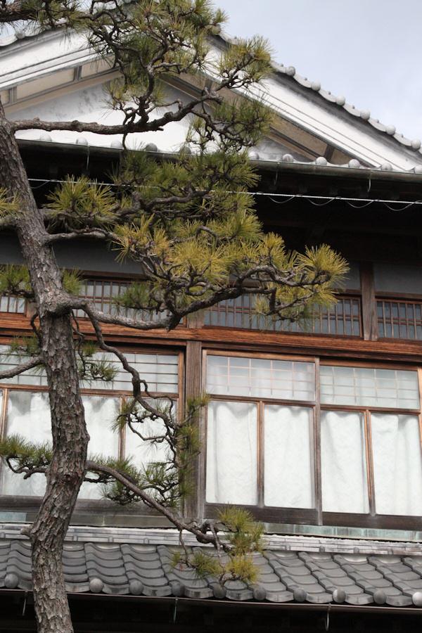 小松酒造201101.jpg