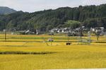 浜嶋酒造20101017.jpg