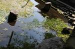 浜嶋酒造20101026.jpg