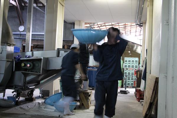 玉の井20110205.JPG