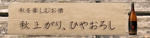 hiyaoro2011.jpg
